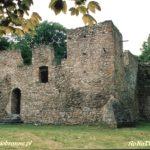 Zamek w Bąkowej Górze
