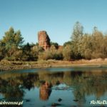 Zamek w Bobrownikach