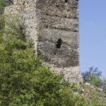Zamek Dziewin