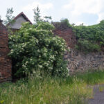 Niemodlin miejskie mury obronne pozostałości baszty